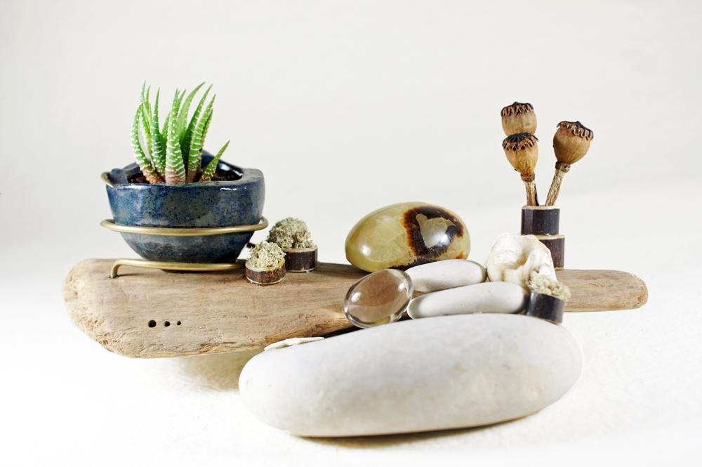 Galerie des compositions végétales